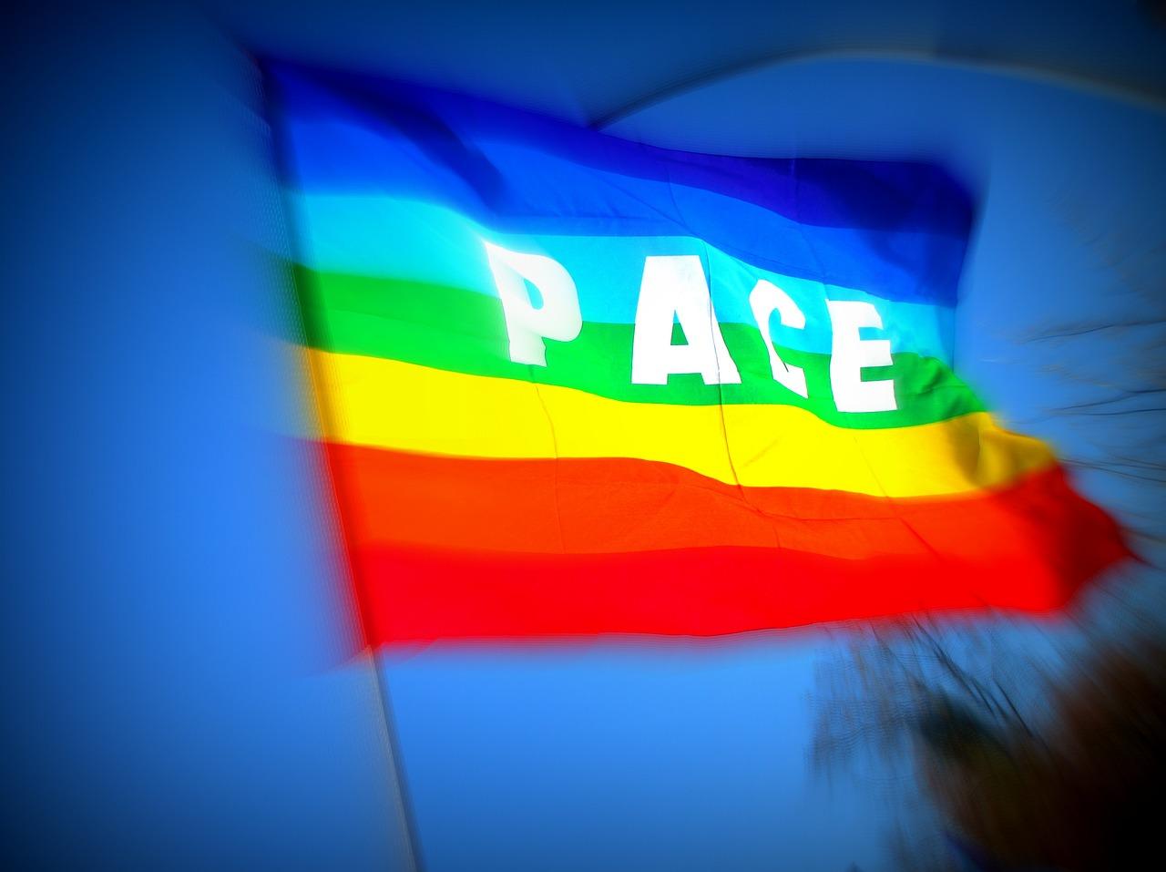 Veranstaltung: Frieden in Bewegung. Wo und wohin?